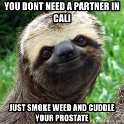 Sarcastic Sloth - You dont need a partner in cali just smoke weed and cuddle your prostate