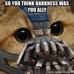 bane cat - So you think darkness was you ally