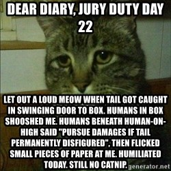 "Depressed cat 2 - Dear Diary, jury duty day 22 Let out a loud meow when tail got caught in swinging door to box. Humans in box shooshed me. Humans beneath human-on-high said ""pursue damages if tail permanently disfigured"", then flicked small pieces of paper at me. Humiliated today. Still no catnip."