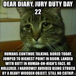 Depressed cat 2 - Dear diary, jury duty day 22 Humans continue talking. Bored today. Jumped to highest point in room. Landed with butt in human-on-high's face. He hollered. I narrowly avoided being struck by a heavy wooden object. Still no catnip.