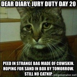 Depressed cat 2 - Dear Diary, Jury Duty day 20 Peed in strange bag made of cowskin. Hoping for sand in box by tomorrow. Still no catnip.