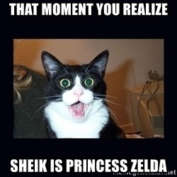 shocked cat - That Moment you realize  Sheik is princess zelda