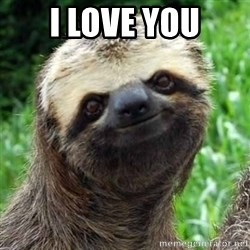 Sarcastic Sloth - I love you