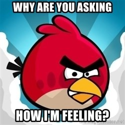 Angry Bird - why are you asking how i'm feeling?