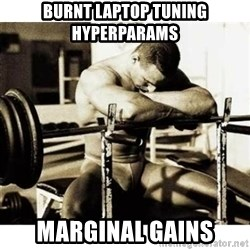 Sad Bodybuilder - BURNT LAPTOP TUNING HYPERPARAMS MARGINAL GAINS