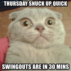 GEEZUS cat - Thursday snuck up quick Swingouts are in 30 mins