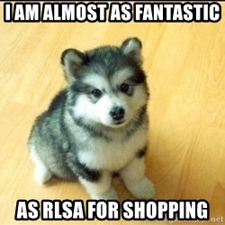 Baby Courage Wolf - I am almost as fantastic  as RLSA for Shopping