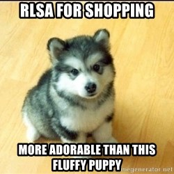 Baby Courage Wolf - rlsa for shopping more adorable than this fluffy puppy