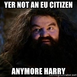 Yer A Wizard Harry Hagrid - YER NOT AN EU CITIZEN  ANYMORE HARRY
