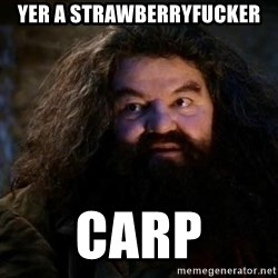 Yer A Wizard Harry Hagrid - YER A STRAWBERRYFUCKER CARP