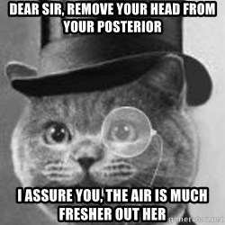 Monocle Cat - Dear Sir, Remove your head from your Posterior  I Assure you, the air is much fresher out her