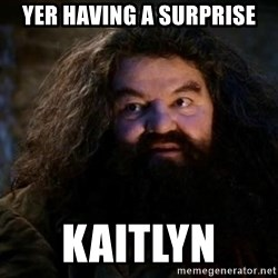 Yer A Wizard Harry Hagrid - Yer having a surprise kaitlyn