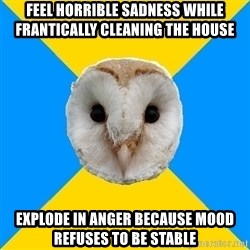 Bipolar Owl - Feel horrible sadness while frantically cleaning the house Explode in anger because mood refuses to be stable