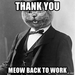 Monocle Cat - thank you meow back to work