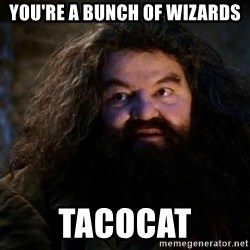 Yer A Wizard Harry Hagrid - You're a bunch of wizards TacoCat