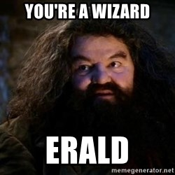 Yer A Wizard Harry Hagrid - You're a wizard ERALD