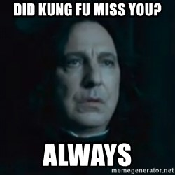 Always Snape - Did kung fu miss you? Always