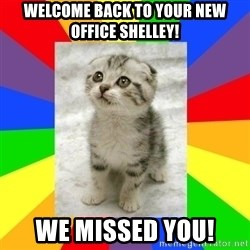 Cute Kitten - Welcome back to your new office Shelley! We missed you!