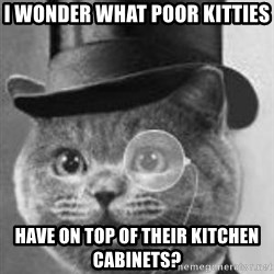 Monocle Cat - I wonder what poor kitties Have on top of their kitchen cabinets?
