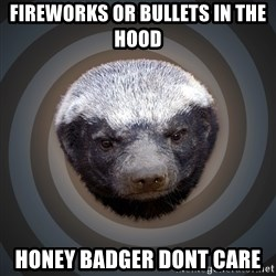 Fearless Honeybadger - Fireworks or bullets in the hood HONEY BADGER DONT CARE