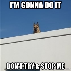 Roof Dog - i'm gonna do it don't try & stop me