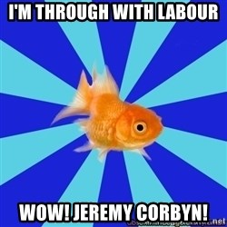 Absentminded Goldfish - I'm THrOUGH WITH LABOUR WOW! JEREMY CORBYN!