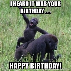 Happy Gorilla - I heard it was your birthday . . .  happy birthday!