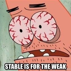 Stoned Patrick -  Stable is for the weak