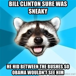 Lame Pun Coon - bill clinton sure was sneaky he hid between the bushes so obama wouldn't see him