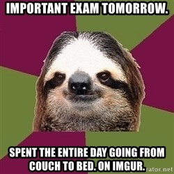 Just-Lazy-Sloth - Important exam tomorrow. Spent the entire day going from couch to bed. On imgur.