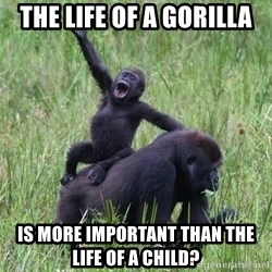 Happy Gorilla - The life of a gorilla is more important than the life of a child?