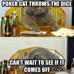 Poker Cat - POKER CAT THROWS THE DICE CAN'T WAIT TO SEE IF IT COMES OFF