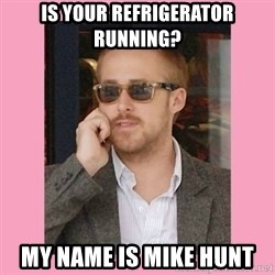 Hey Girl - is your refrigerator running? my name is mike hunt