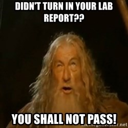 Gandalf You Shall Not Pass - Didn't turn in your lab report?? you shall not pass!