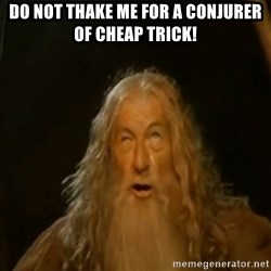 Gandalf You Shall Not Pass - do not thake me for a conjurer of cheap trick!