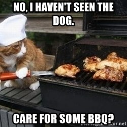 BBQ CAT - No, I haven't seen the dog. Care for some BBQ?