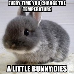 ADHD Bunny - Every time you change the temperature a little bunny dies