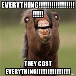 Horse - EVERYTHING!!!!!!!!!!!!!!!!!!!!!! THEY COST EVERYTHING!!!!!!!!!!!!!!!!!!!
