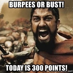 300 - Burpees or Bust! Today is 300 points!