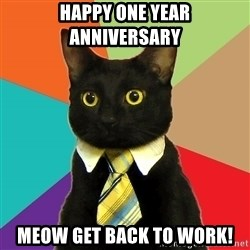 BusinessCat - Happy One Year Anniversary Meow get back to work!