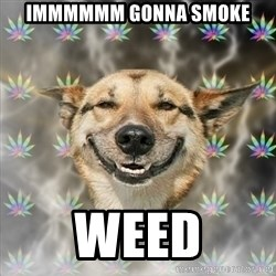 Stoner Dog - immmmmm gonna smoke weed