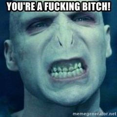 Angry Voldemort - you're a fucking bitch!