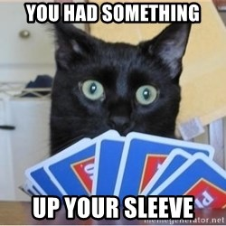Poker Cat - You had something up your sleeve