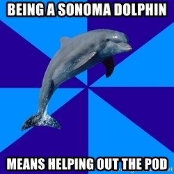 Drama Dolphin - Being a Sonoma Dolphin  Means helping out the pod