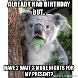 surprised koala - Already had Birthday but.. have 2 wait 3 more nights for my Present?