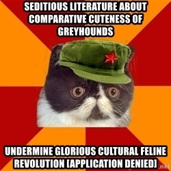 Communist Cat - Seditious literature about comparative cuteness of greyhounds Undermine glorious cultural feline revolution [APPLICATION DENIED]