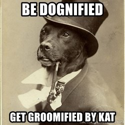 rich dog - Be Dognified Get groomified by kat
