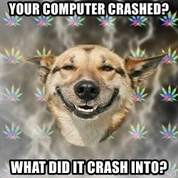 Stoner Dog - your computer crashed? what did it crash into?