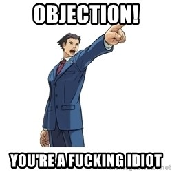 OBJECTION - OBJECTION! You're a fucking idiot