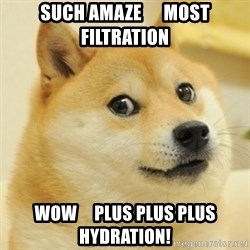 Dogeeeee - such amaze      most filtration wow     plus plus plus hydration!